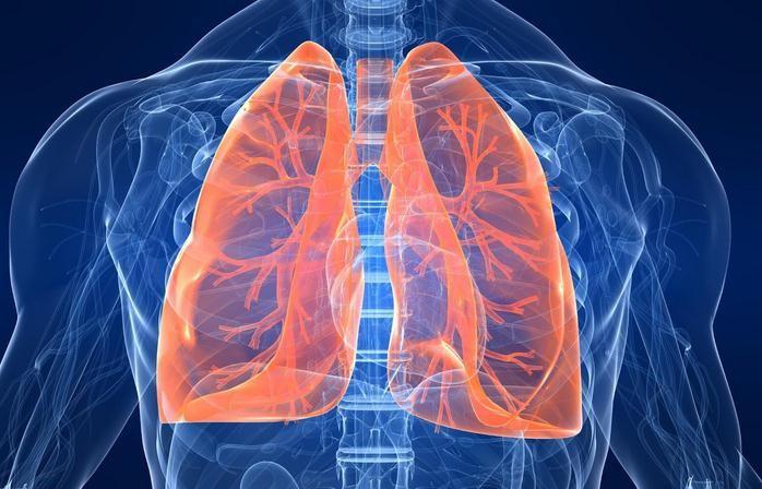 cropped-funciones-pulmones.jpg
